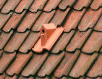 Roof Tile Designed as a Birdhouse