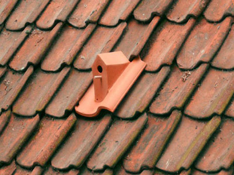 Kuş Evi Olarak Tasarlanan Çatı Kiremiti